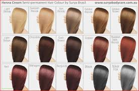 Ion Demi Permanent Hair Color Directions Lajoshrich Com