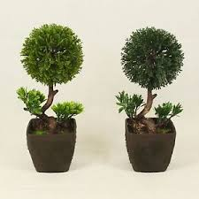office bonsai. Image Is Loading Bonsai-Tree-in-Square-Pot-Artificial-Plant-Decoration- Office Bonsai