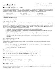 Certified Internal Auditor Sample Resume Mitocadorcoreano Com