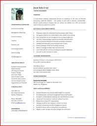 Accountant Cv Sample Free Sample Accounting Resume Hirnsturm Me