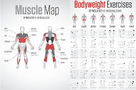 Bodyweight Strength Workout Unique Bodyweight Chart