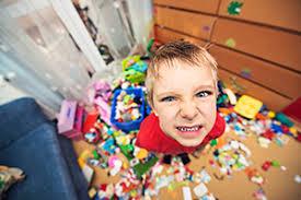 Adhd Children Disruptive Behavior In Children With Adhd Chadd