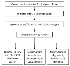Flowchart For Hydrocarbon Phenotyping Of Algal Species By