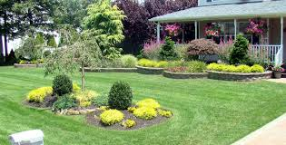 My Backyard Ideas Landscaping For Your Fence Lighting  ArafenLandscape My Backyard