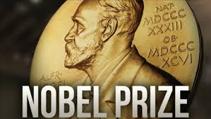 Image result for peace nobel prize