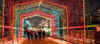 zoo lights. Plain Zoo Lincoln Park Zoo Annual ZooLights Extends Through Jan 7  On Lights H