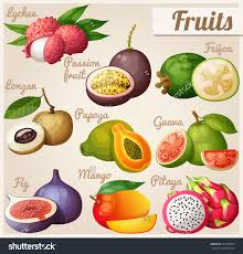 tropical fruit names. Interesting Fruit Exotic Fruit Images With Names  Is Strawberry A To Tropical Fruit Names H