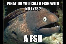 Bad joke eel fishing meme gallery - Fish Around via Relatably.com