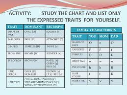 Eye Color Recessive Dominant Chart Why Do We Look The Way We Are Ppt Download