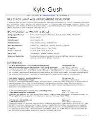 Web Developer Resume Objective Developer Resume Nice Front End