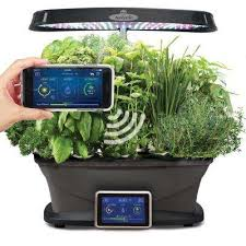 bounty wi fi with gourmet herb seed pod kit