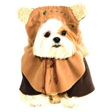 Rubies Dog Costume Size Chart Buy Rubies Pet Ewok Costume Brown Online In Dubai Uae Sprii