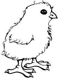 Chicken Coloring Pages Chicken Coloring Pages Chicken Little