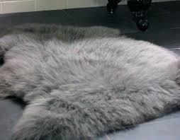 sheepskin rugs sheep skin rug sheepskin rugs for south sheepskin rug for baby organic sheepskin rugs