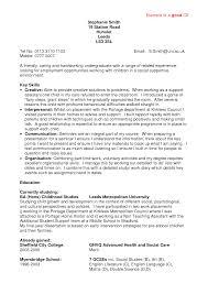 Example Of A Good Resume Format   Dadaji.us