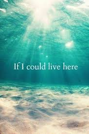 If Only I Could Live In The Ocean Quote Ocean Blue Beach