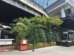 an assortment of the eclectic planters and plantings at the standard east village