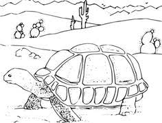 Small Picture Gila Monster Coloring Pages classroom ideas Pinterest Gila