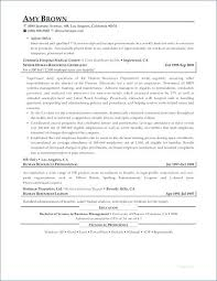 Best Executive Resume Format 21 Fantastic Executive Level Resume