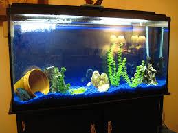 fish tank lighting ideas. Marineland Heartland 60 Gal Aquarium Ensemble Reviewed In Dimensions 1024 X 768 Fish Tank Lighting Ideas