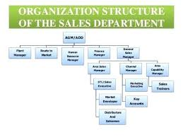 Marketing Department Org Chart Problem Solving Hotel Sales And Marketing Organization Chart