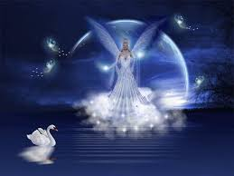 angels images an angel s love hd wallpaper and background photos