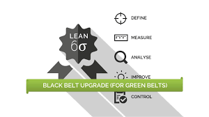 Lean Six Sigma Black Belt For Green Belts In House Lean