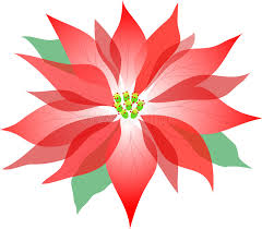 Image result for poinsettia plant clipart
