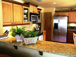 Elegant Kitchen Designs some kitchen designs with granite countertops ideas 4803 by xevi.us