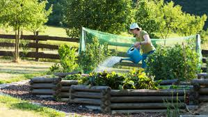 7 reasons a raised bed garden can make gardening easier and more delicious