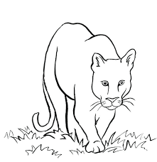 mountain lion coloring page mountain lion coloring sheet