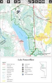 The Wild Life Deer Plans Scouting Lake Panasoffkee Wma