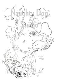 Printable coloring pages of dogs. Dog Adult Kid Coloring Page Dog Printable Coloring Page Etsy