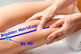 All About Meridian Massage Online Certification » Big Tree School of  Natural Healing