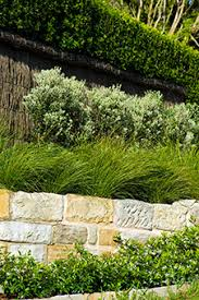 Small Picture Joanne Green Newport Northern Beaches Sydney Garden Entrance
