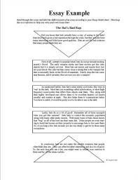 examples of descriptive essays   term papers   wordsexample of essay paragraphs summarised — university of leicester
