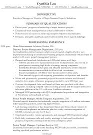 Example Resume Executive Manager Director Business pg1 ...