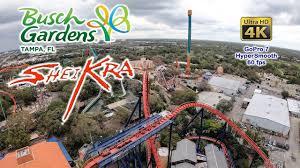 2019 sheikra roller coaster on ride ultra hd 4k pov busch gardens ta