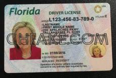Ids Identification Florida Scannable Fake Id Buy