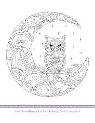 Small Picture Blue Star Coloring book Exotic Animal Designs by artist Katie
