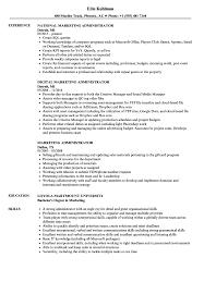 Marketing Administrator Sample Resume Marketing Administrator Resume Samples Velvet Jobs 5