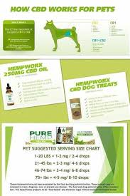 Hempworx Dosage Chart For Dogs Pin On Pain Relief