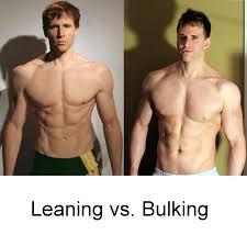 bulking phase