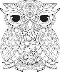 Free Owl Coloring Pages For Adults Coloringstar