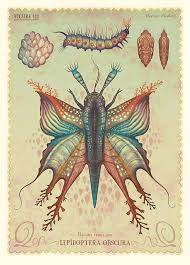you can see more of his fictional additions to natural history on his insram and behance and find fine art prints of his subjects on his etsy