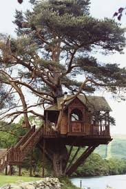 Treehouse Holidays In The UK France Portugal U0026 Italy  Canopy Treehouse Scotland
