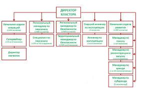 Анализ деятельности компании Пятерочка и Северо Западного  В каждом из представленных кластеров существует своя организационная структура Каждый отдел представленный в данной структуре находится в подчинении