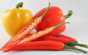 Thực phẩm càng ăn vòng 1 càng teo Images?q=tbn:ANd9GcSNQJ3x4oBx-JsxuAGm48fT8ekklTIzOTBX9F9IXKs4Rs_hTwYt