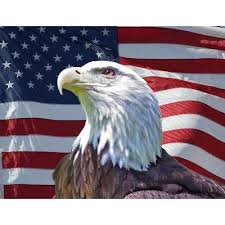 Business Greeting Cards | Memorial Day | Patriotic Eagle
