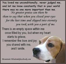 Loss Of Pet Quotes Gorgeous Pray For Lost Pet Loss Of Pet Novena For Lost Pets Zrcebeachclub